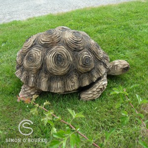 Tortoise Carving