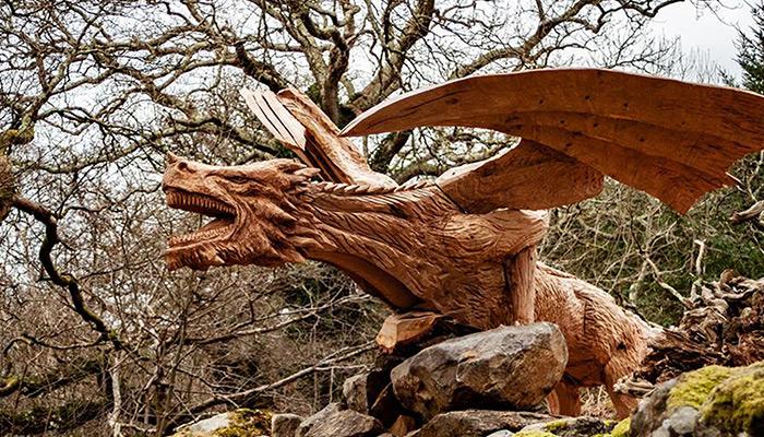 Dragon of Bethesda by simon o'rourke
