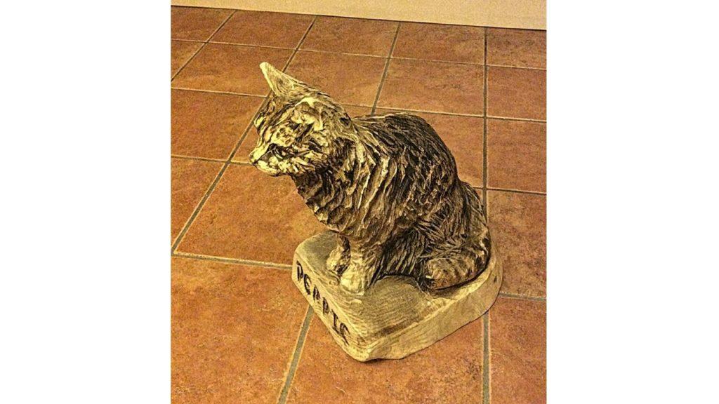 Debbie the Cat: Pet Portrait by Simon O'Rourke