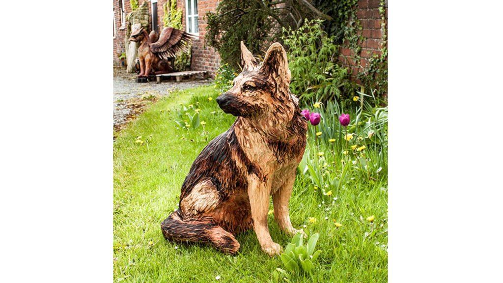 Cheila, the German Shepherd: a pet portrait by Simon O'Rourke