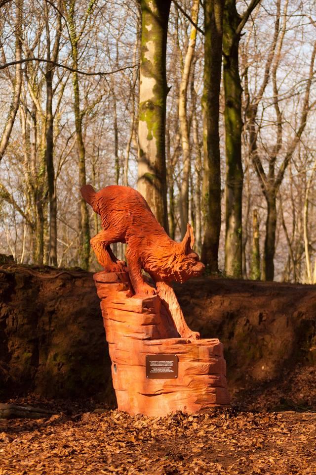 Fforest Fawr Lynx by Simon O'Rourke