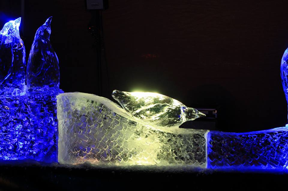 Close up of penguin ice carving by simon o'rourke