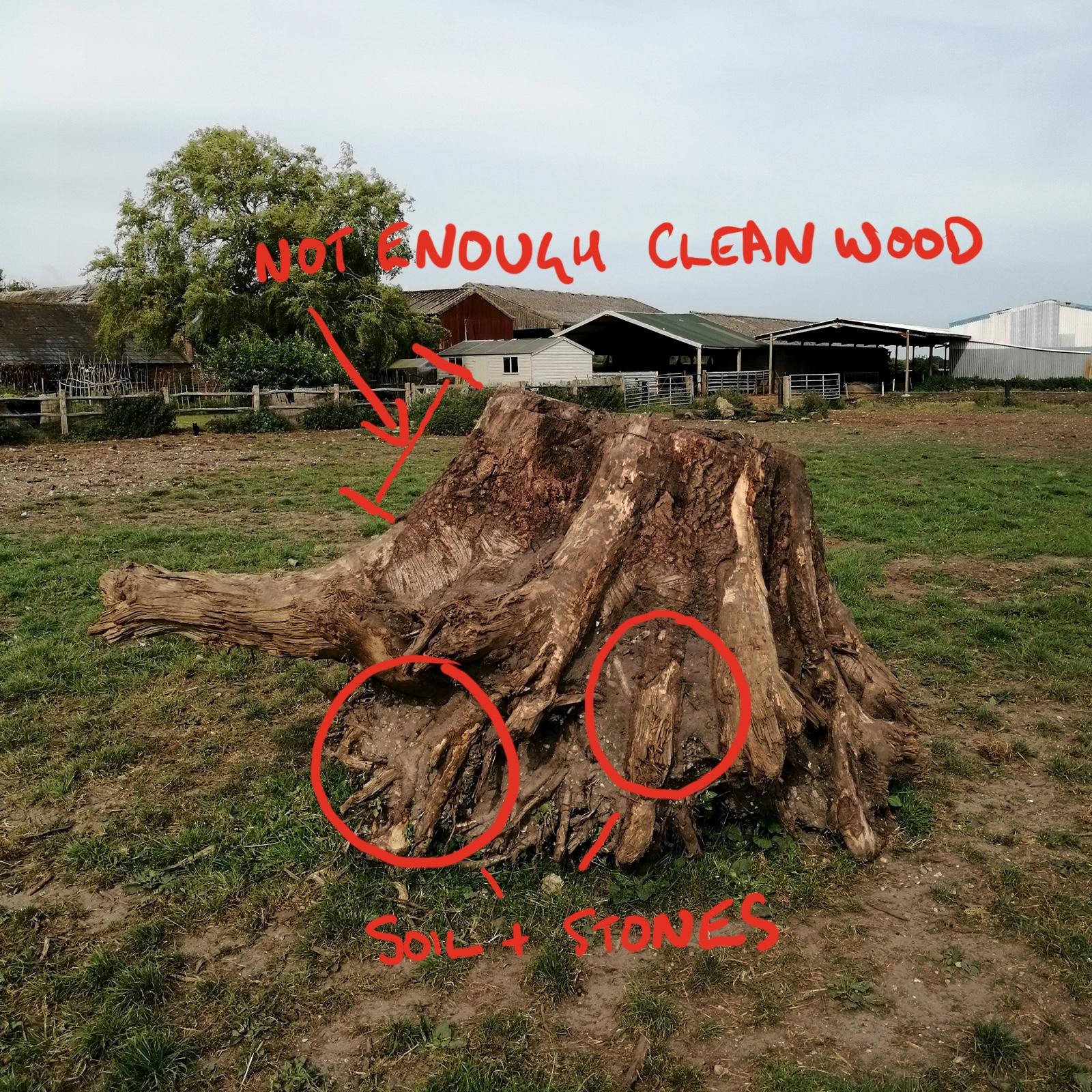 Unsuitable tree for a sculpture
