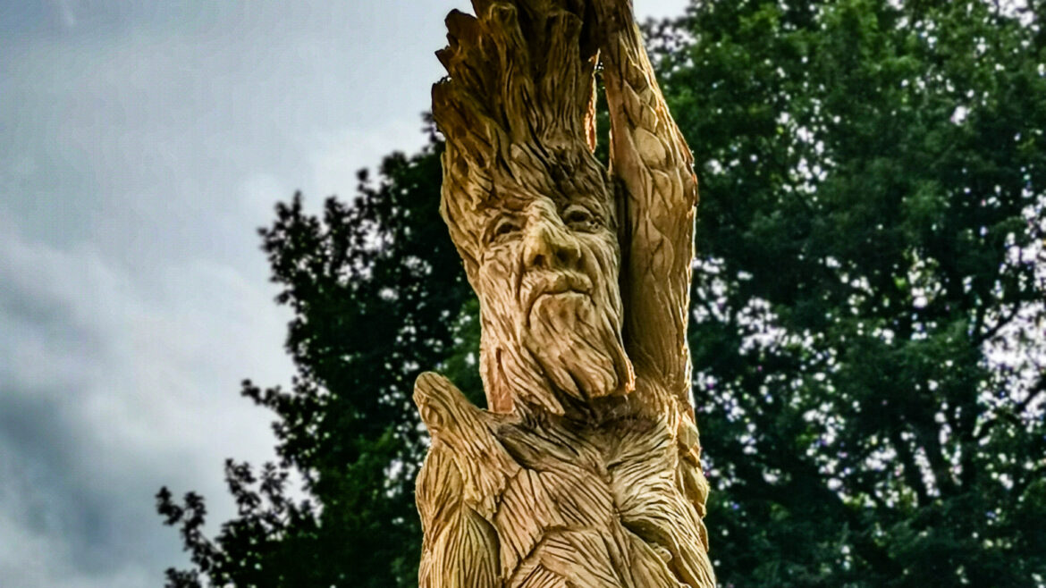 Face of the ent tree sculpture by simon o'rourke in Poulton Hall gardens