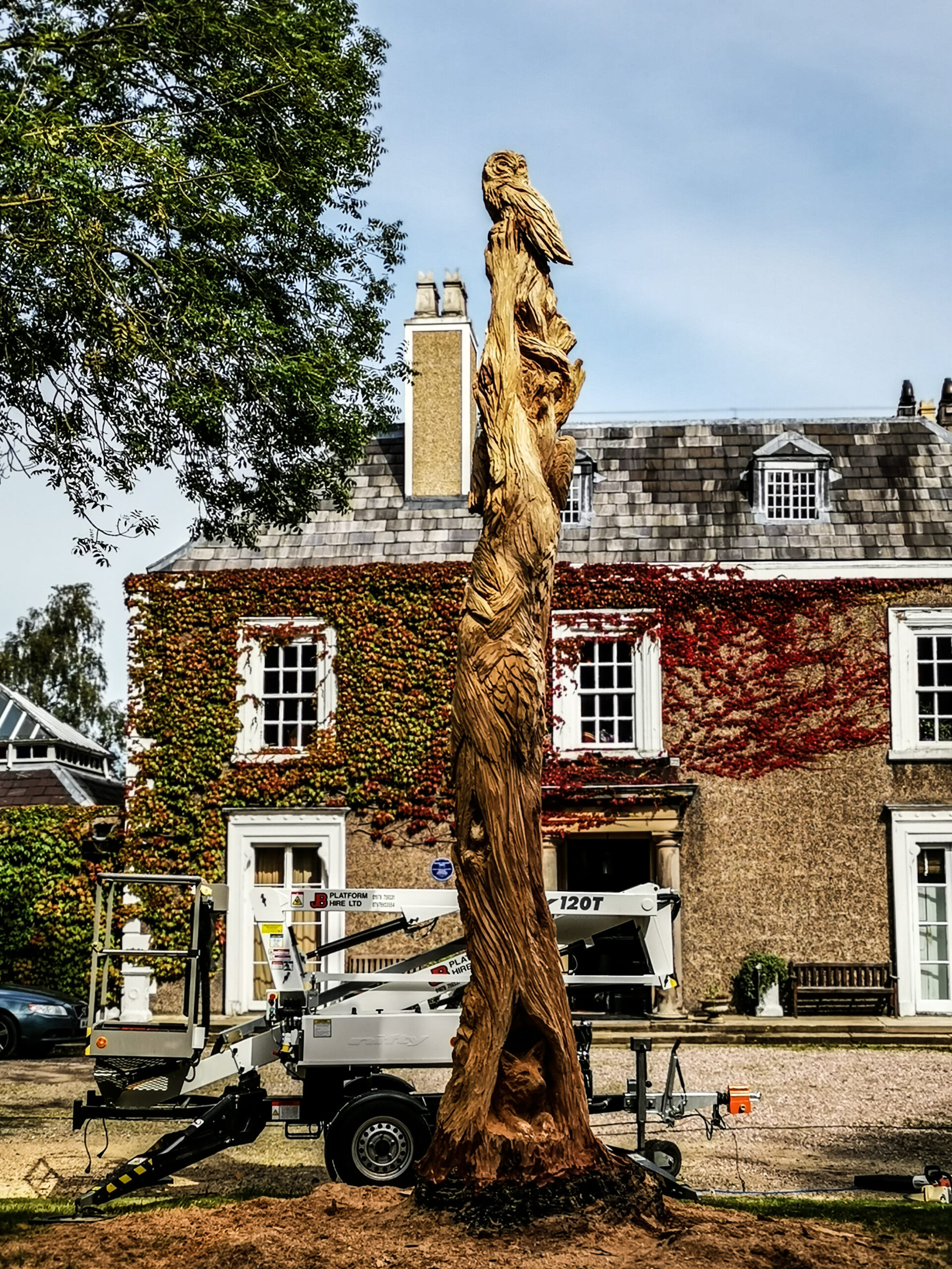 ent tree sculpture by simon o'rourke. carved into a standing monkey puzzle tree outside poulton hall