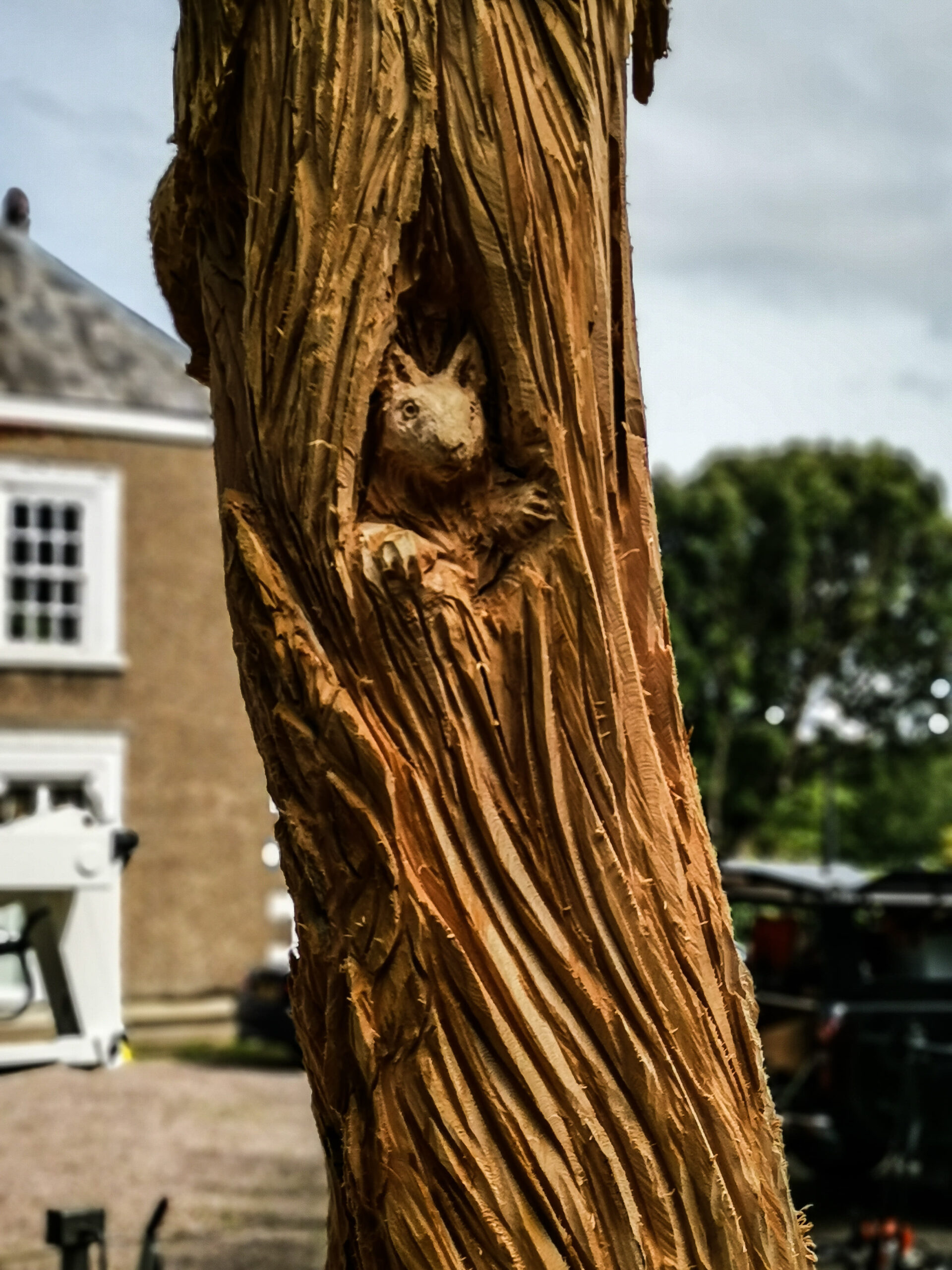 Squirrel in the trunk of the ent tree sculpture by simon o'rourke