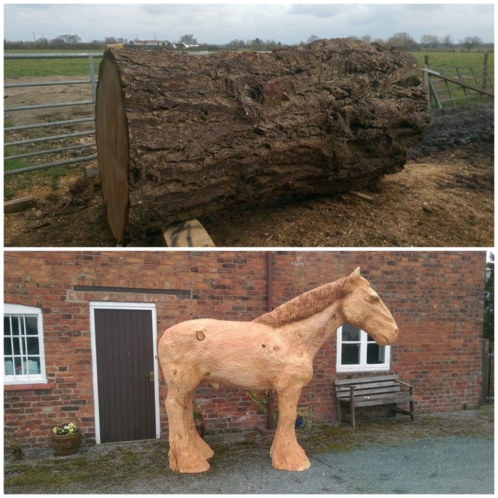 The timber used for this carving of a shire horse. The natural grain enhances the texture and shape of the horse.