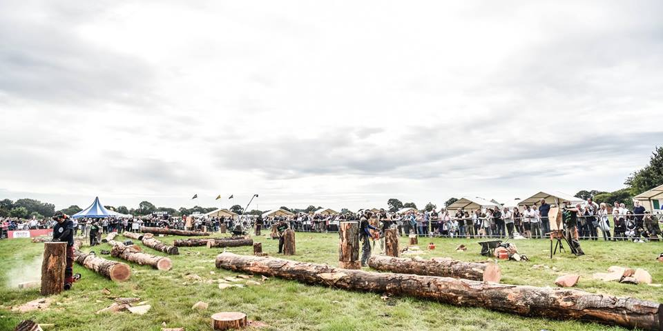 scene from english open chainsaw competition 2019