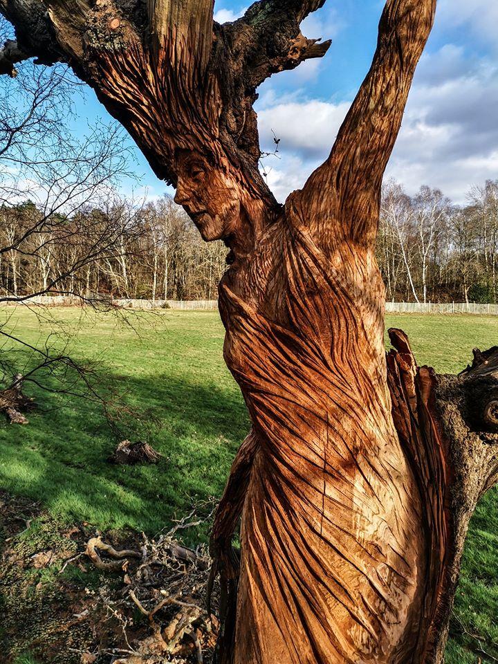 Body of the Oak Maiden by Simon O'Rourke