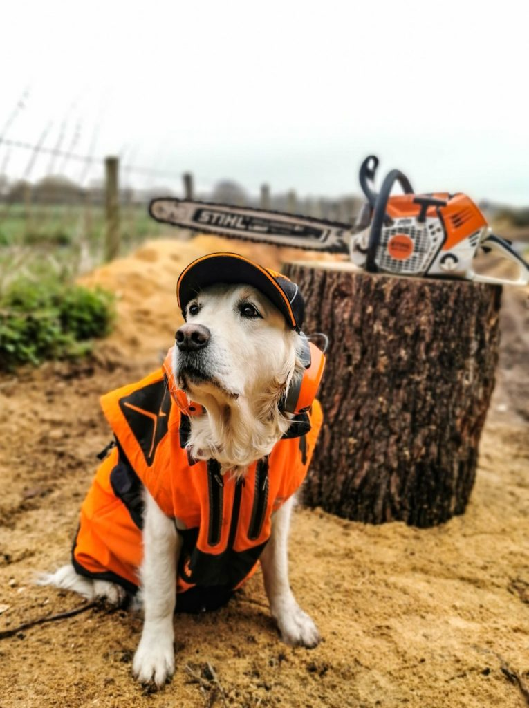When Poppy met stihl clothing