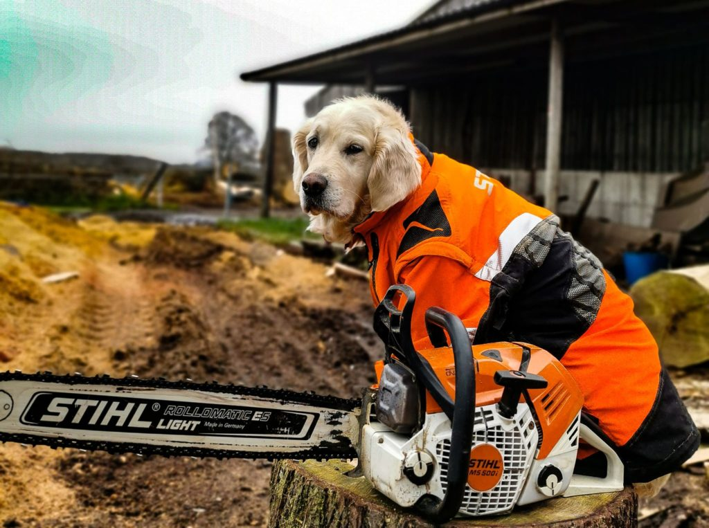 Poppy Stihl with the MS500i