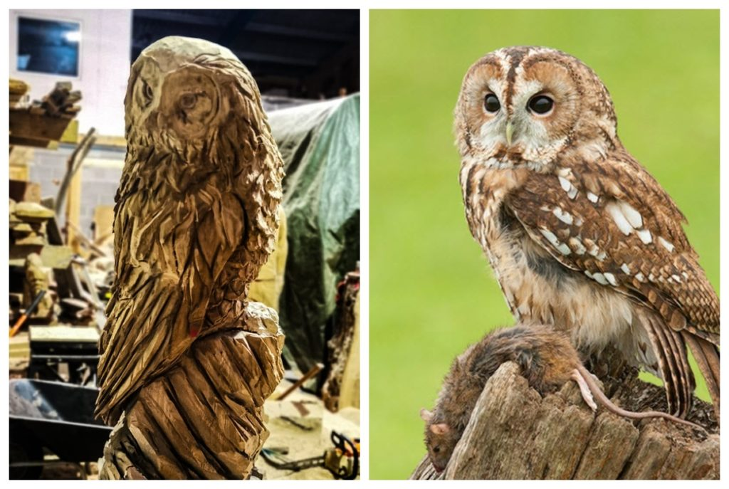 bespoke tawny owl and original by Simon O'Rourke