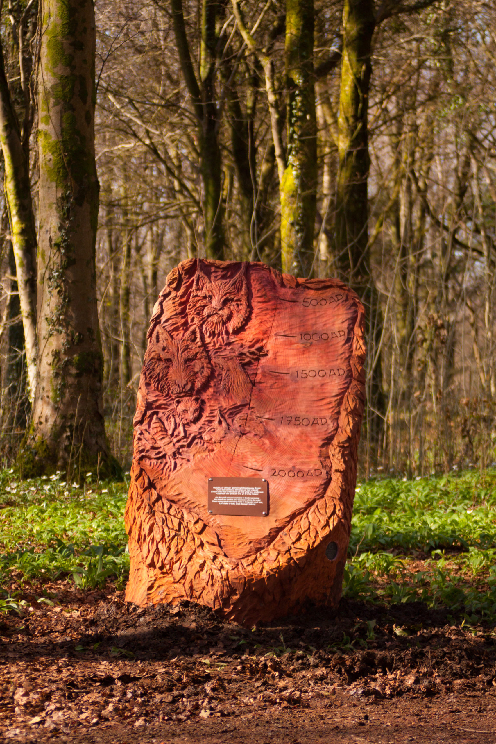 timeline from fforest fawr woodland sculpture trail carved from redwood, featuring wolf, lynx and pine marten