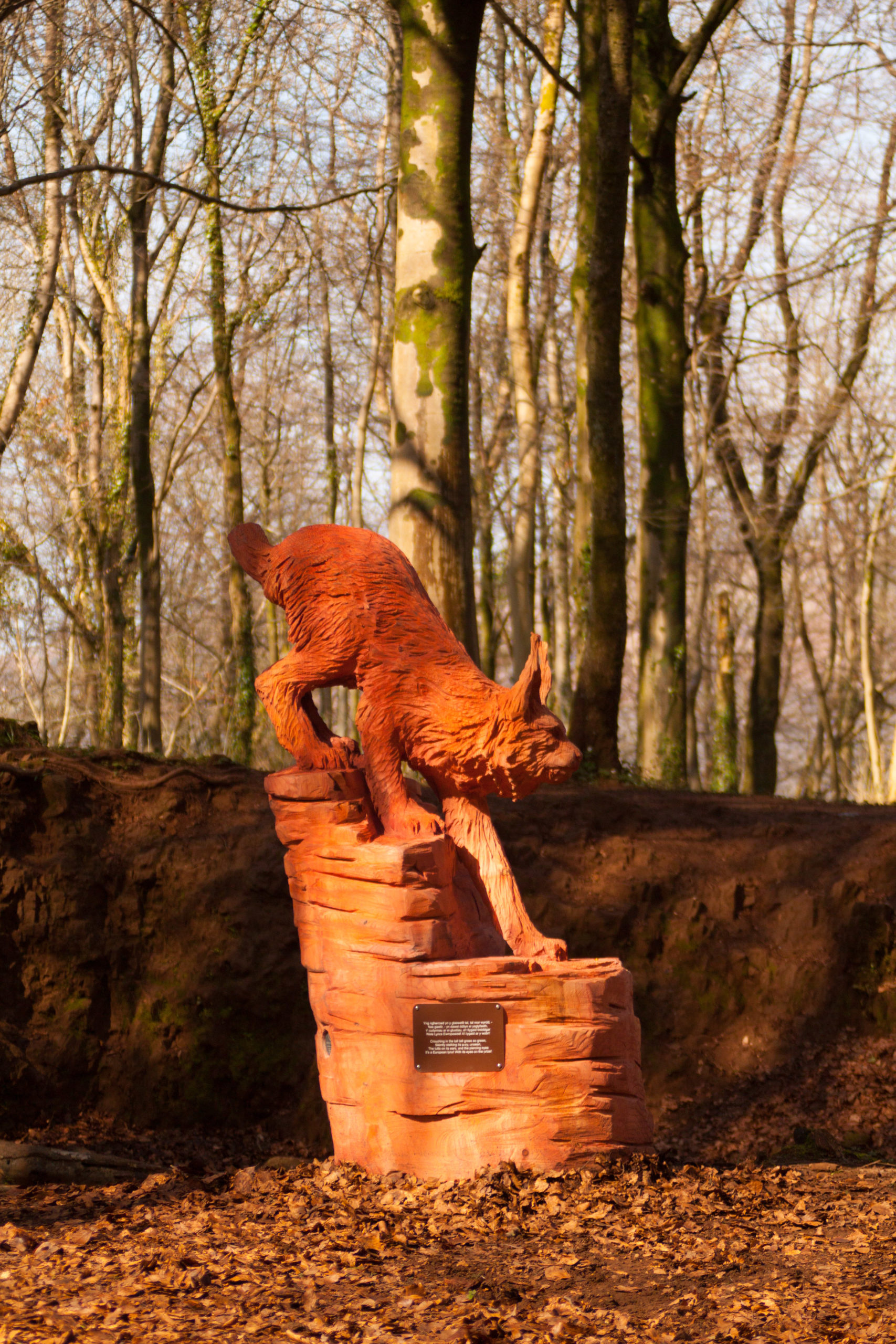 Fforest Fawr woodland sculpture trail by Simon O'Rourke: european lynx