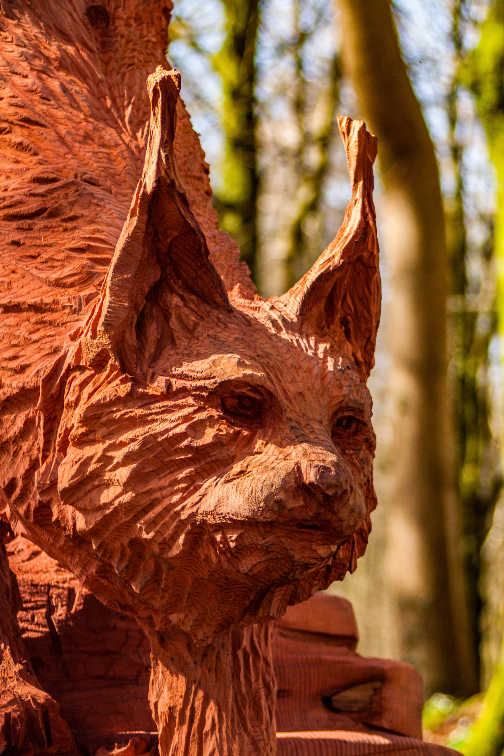close up of a redwood tree carving of a forest lynx from simon o'rourke's fforest fawr woodland sculpture trail