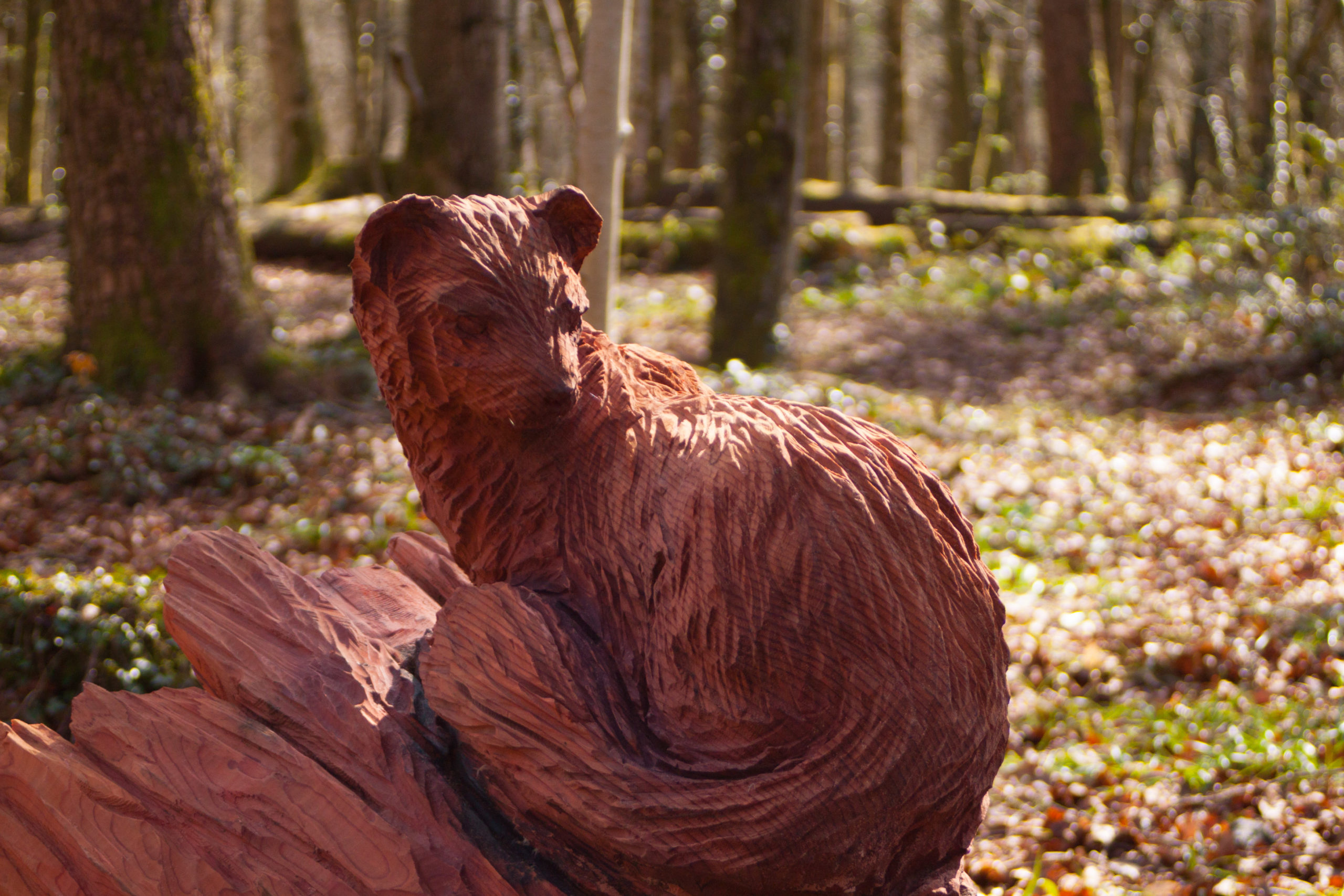 Fforest Fawr Woodland Sculpture Trail by Simon O'Rourke: Pine Marten