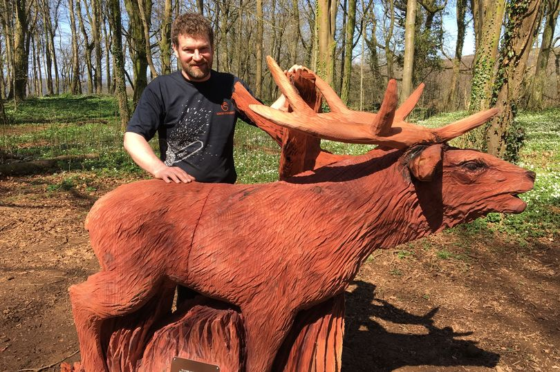 chainsaw art/tree carver simon o'rourke photogrpahed with a redwood red deer he carved for fforest fawr woodland sculpture trail