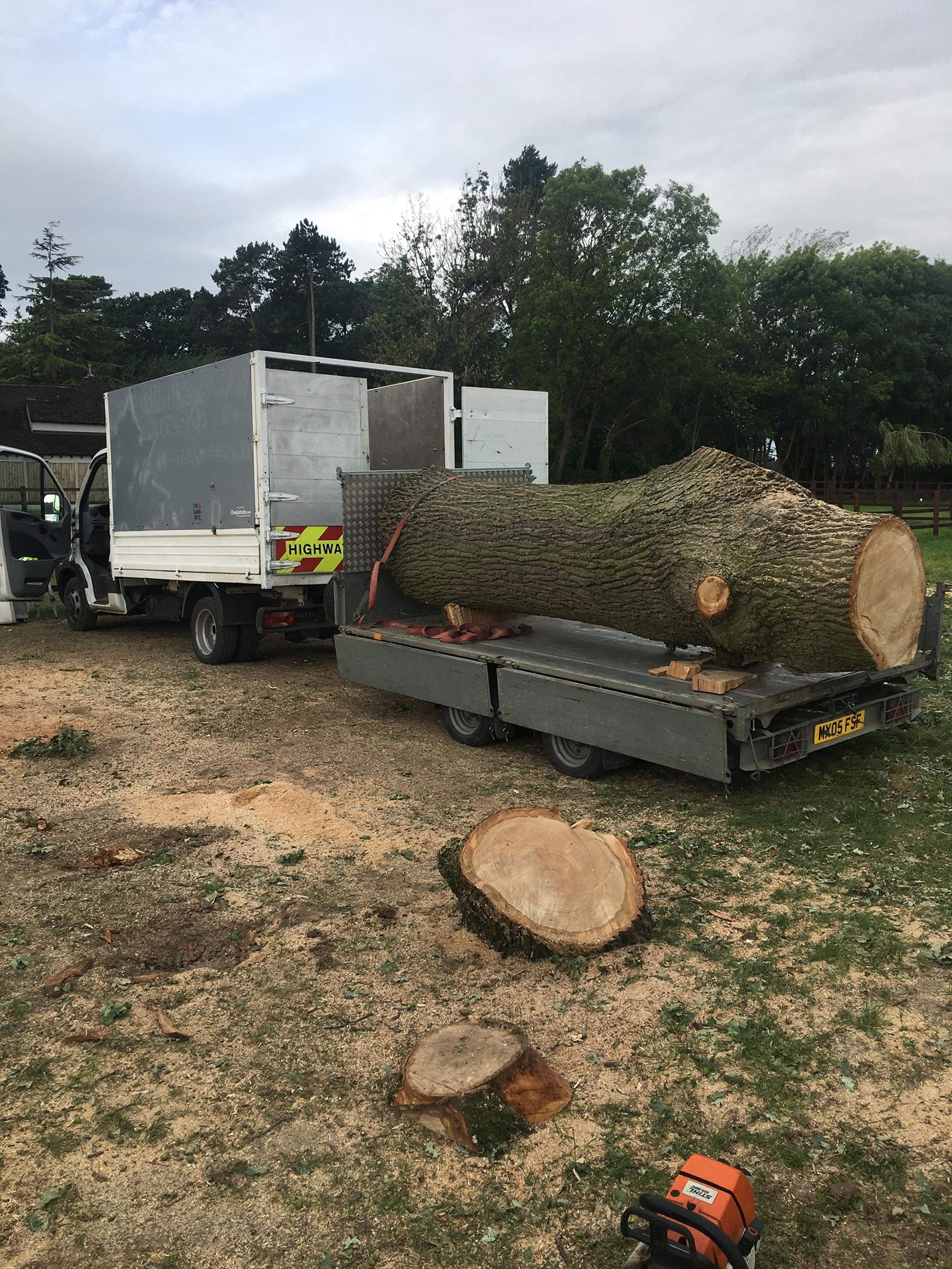 15' oak on the back of a trailer ready for transportation