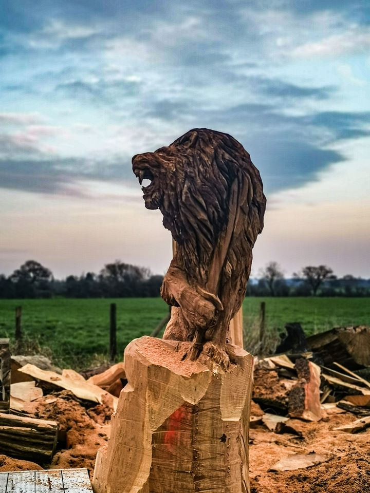 A Sri Lankan Lion sculpture in oak by simon o'rourke against a vivid sunset. The lion holds a sword as he does on the sri lankan flag.