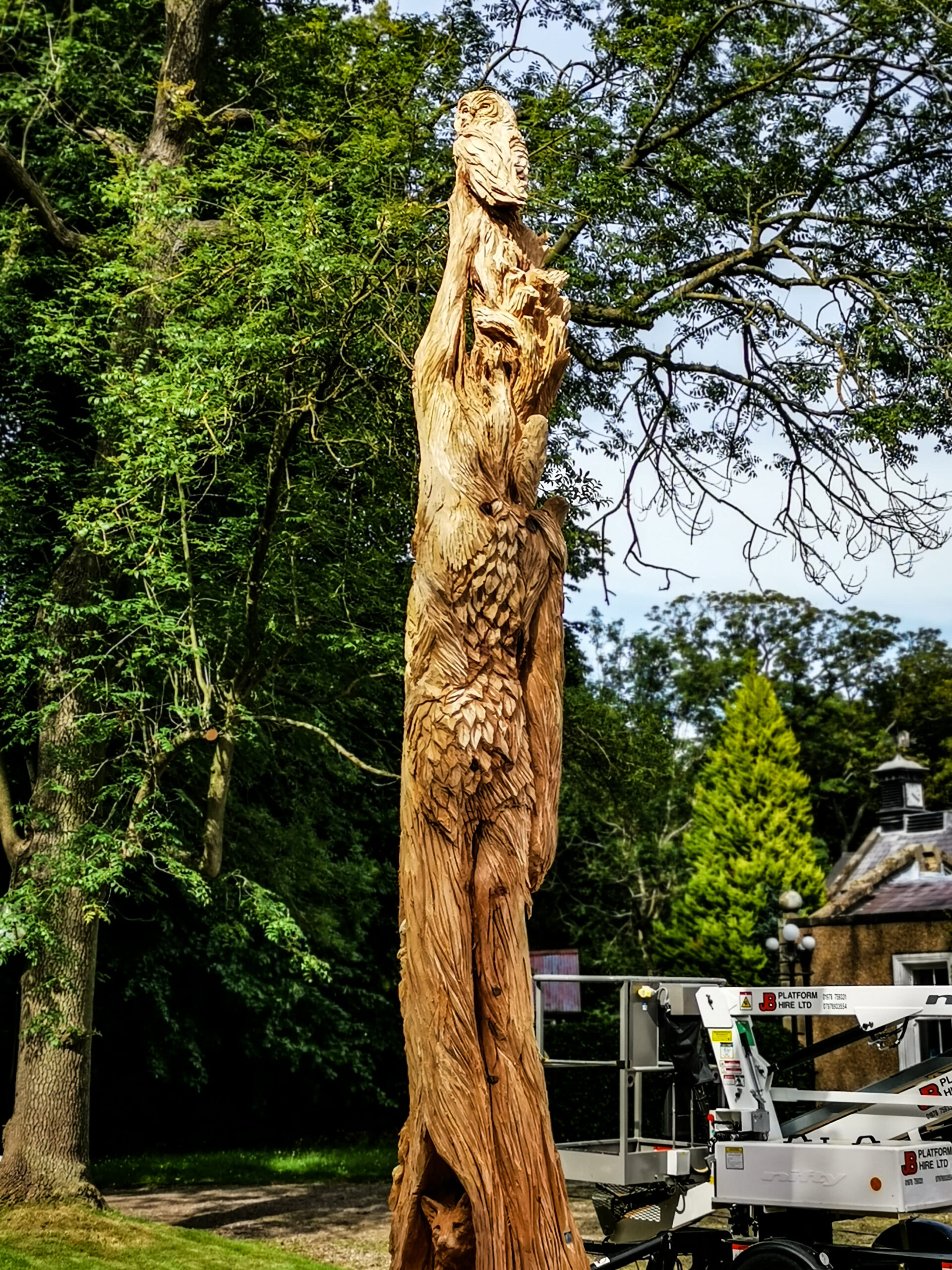 rear view of the ent tree sculpture by simon o'rourke, showing the leaf and trunk detail