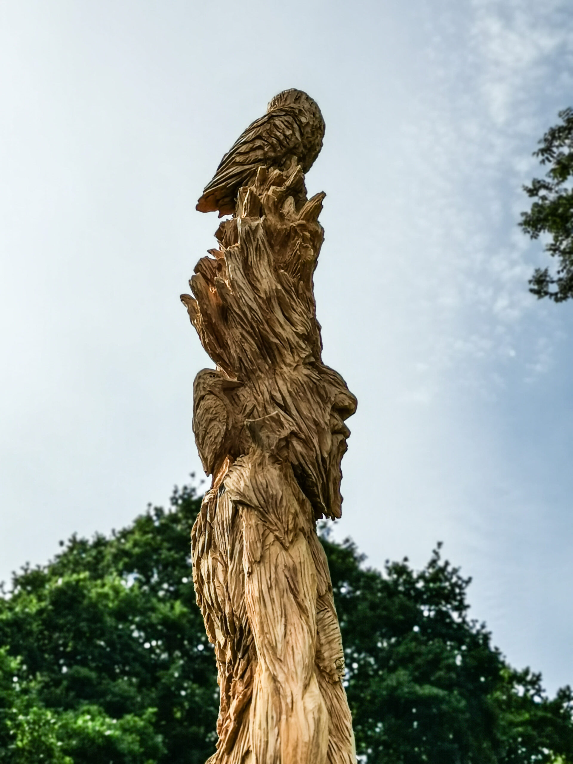 woodpecker and owl in simon o'rourke's ent sculpture