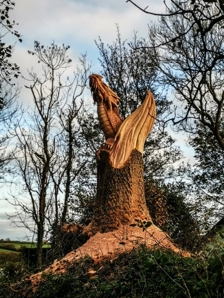 how to raise funds for a tree carving sculpture: consider fundraising events or selling merchandise  for a sculpture for a local park. Photo shows a dead yew tree trunk carved into a dragon hatching from its base