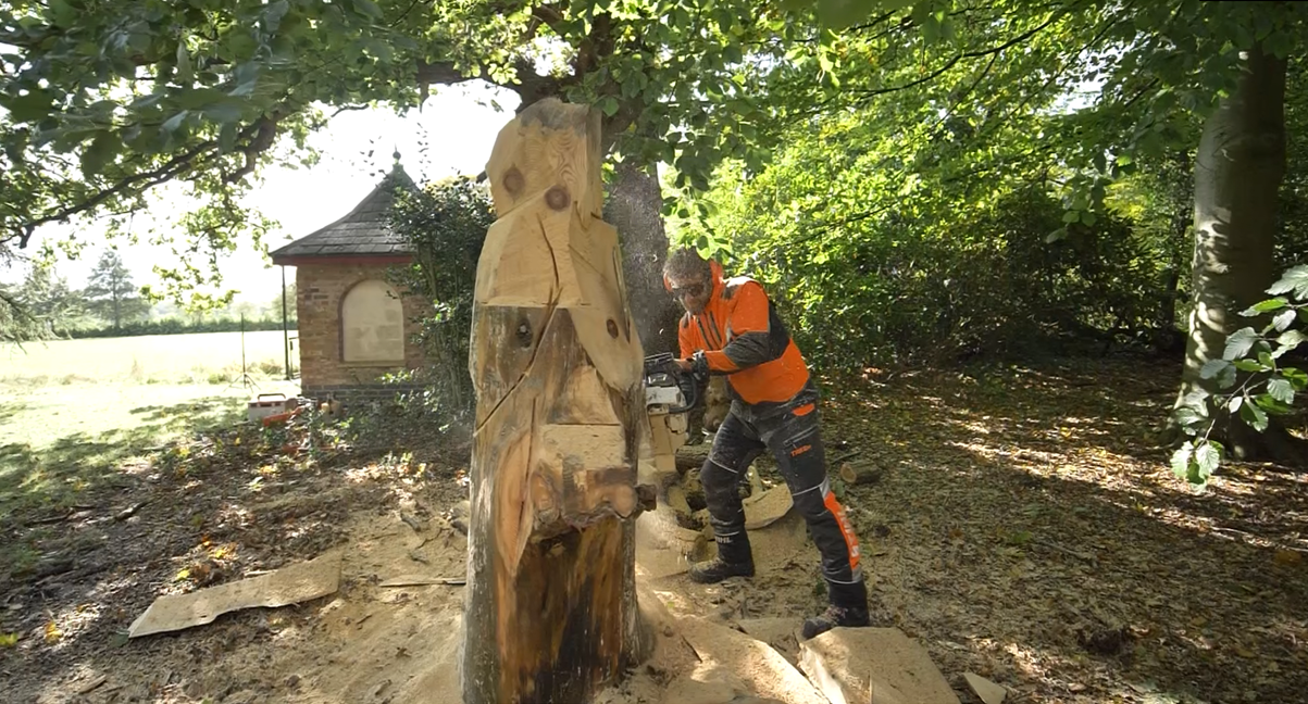 The process of creating the gollum sculpture: photo shows simon o'rourke using a chainsaw to remove large pieces of wood from the trunk of a monkey puzzle tree. he wears stihl clothing and uses a chainsaw. a figure is beginning to emerge in the top half or the timber.