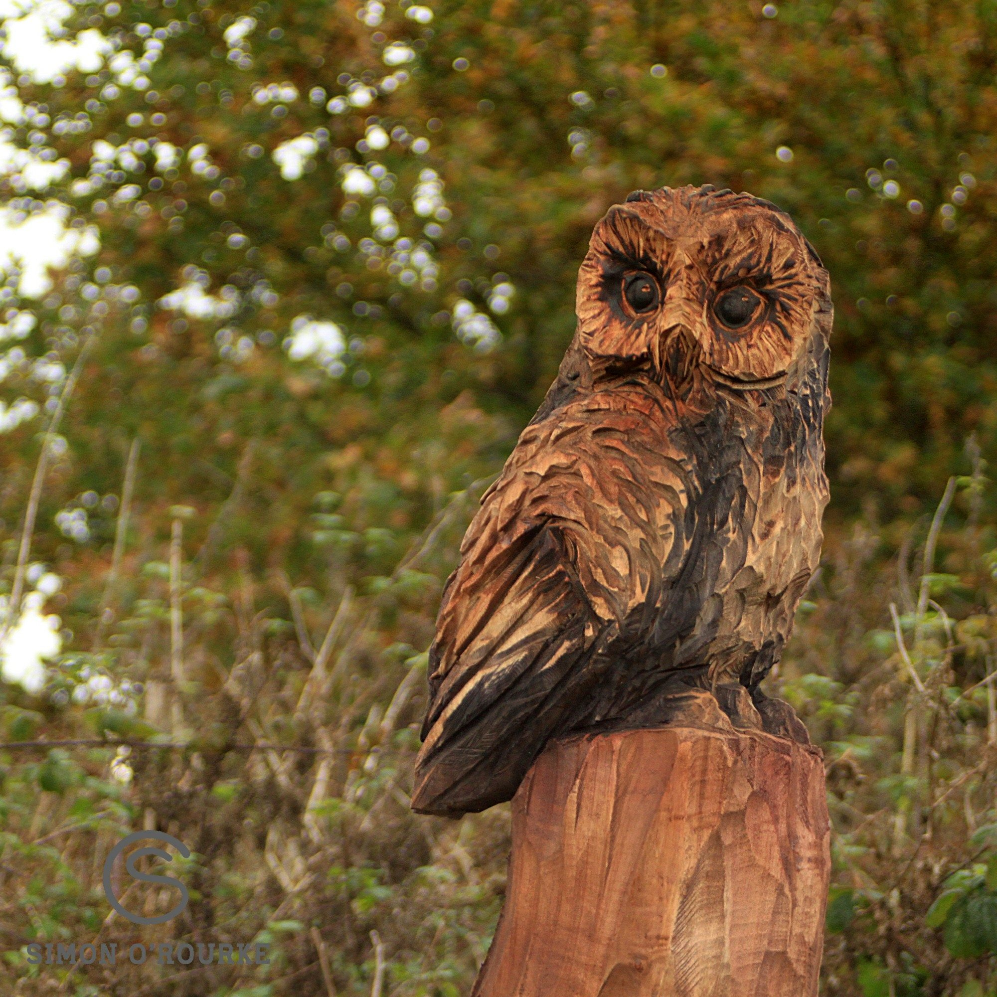 Wooden sculpture of an owl on top of a tree trunk. The sculpture is part of the meadow park sculpture trail by Simon O'Rourke