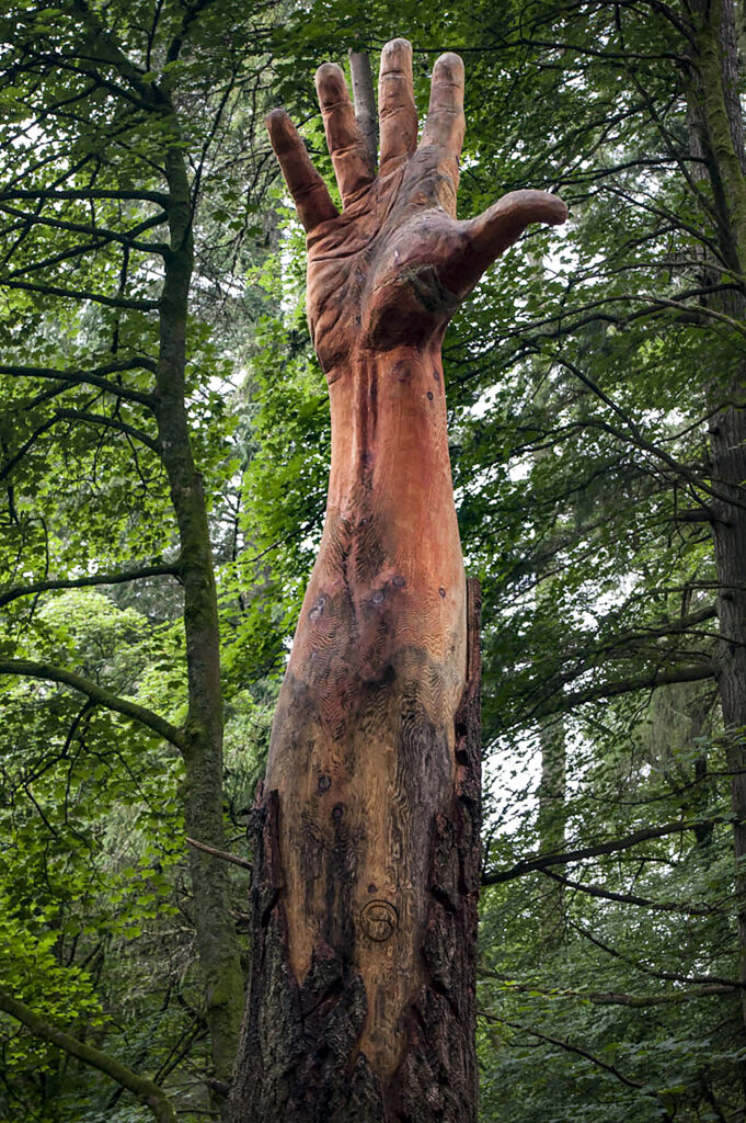 how to raise funds for a tree carving sculpture: projects like this which are in public places could be funded through crowd sourcing. Photo shows a giant hand carved into a dead tree trunk. it is surrounded by trees.