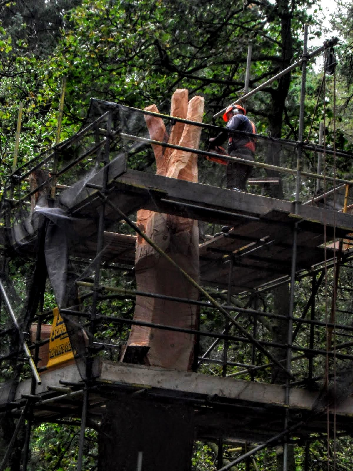 Picture shows scaffolding surround a tree stump. It is in the process of ebing carved into a giant hand by artist simon o'rourke. The piece is now known at the giant hand or vyrnwy