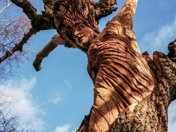 The Oak Maiden by Simon O'Rourke. Oak is the best wood for a sculpture according to chainsaw carver simon o'rourke