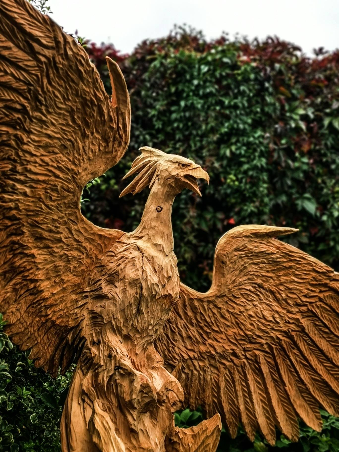 phoenix carved into a cedar trunk by artist simon o'rourke, one of his sculptures of 2020