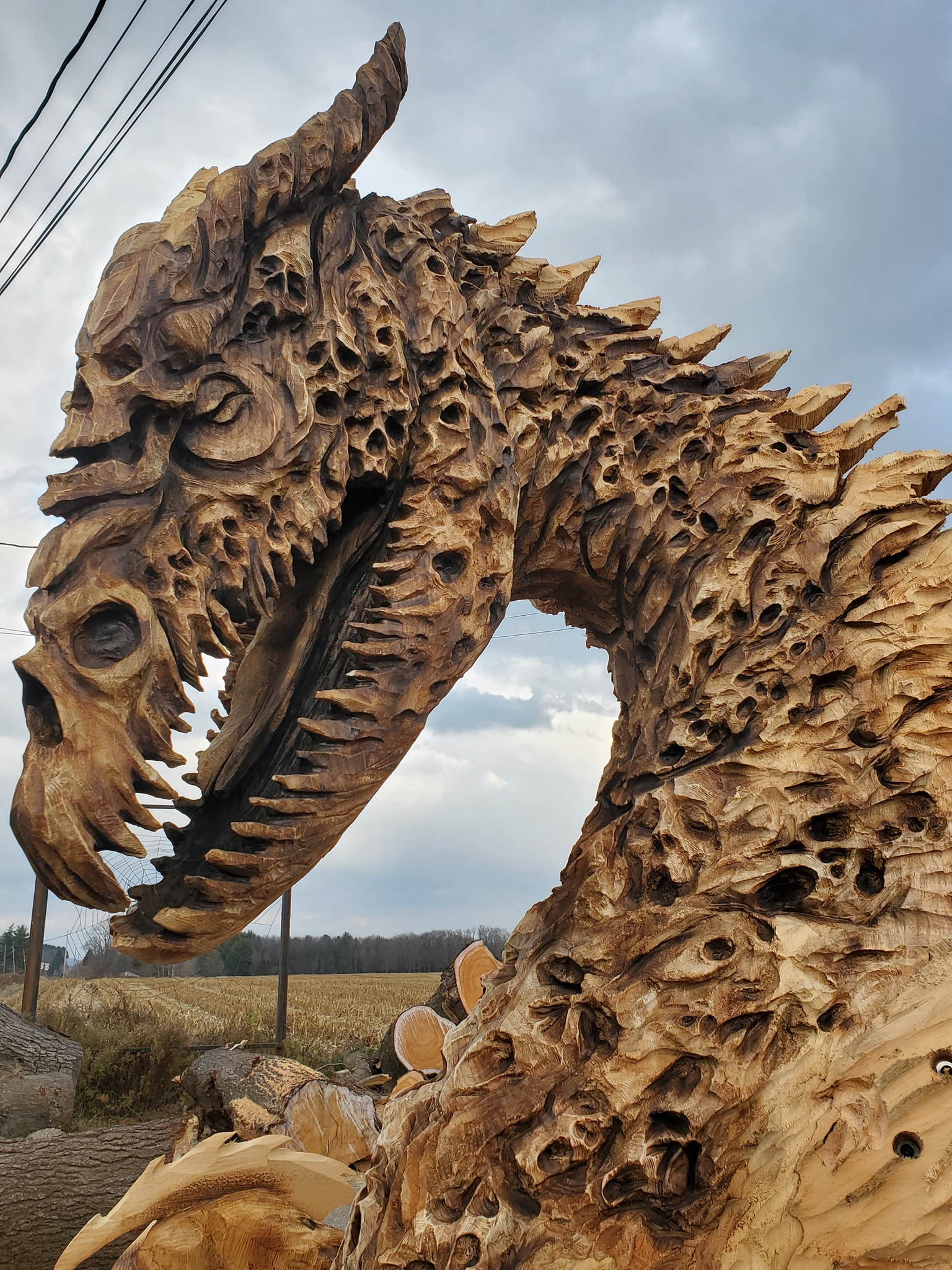 what are your influences? Photo shows an intricate wood sculpture of a dinosaur by Scoot Dow. Scott is one of the chainsaw artists admired by fellow sculptor Simon O'Rourke