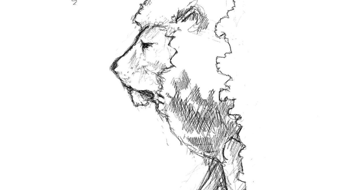 commissioning the best sculpture: a sketch of a lion by simon o'rourke. It is the head and front legs on a lion standing on a plinth. the lion is suggested to be Aslan from C S Lews' Narnia series.