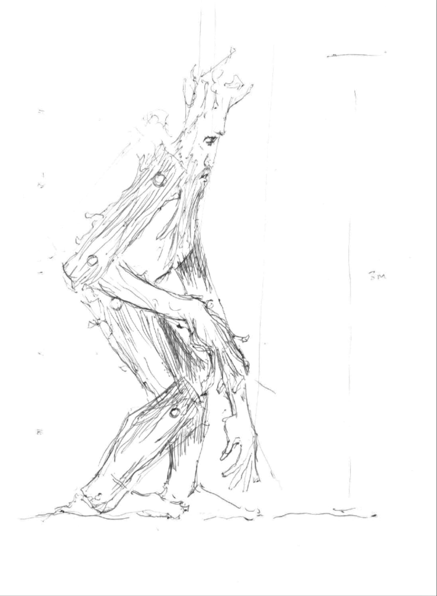 sketch of an ent by simon o'rourke.