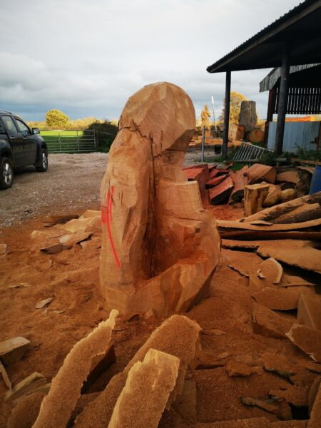 How best to position a sculpture within a log... photo shows the start of a tree carving sculpture. The shape is blocked out but there is a large crack and split at the centre making it an usuitable log for sculpture.