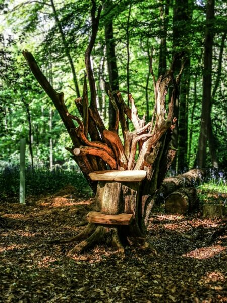 a throne made out of wood by chainsaw artist simon o'rourke. it is surrounded by woodland and is part of the narnia beaver den sculptures series at narnia treehouse, oxford