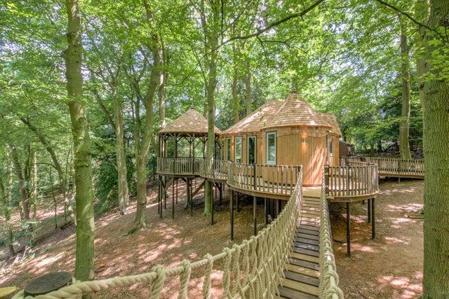narnia treehouse, oxford