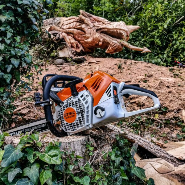 stihl chainsaw with standard bar in front of a fallen tree carved into a dragon by simon o'rourke